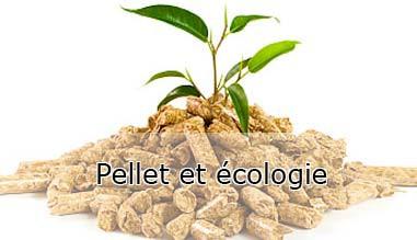 Pellet et écologie